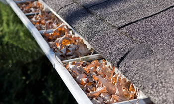 gutter cleaning Columbus